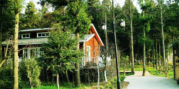 图六为度假村的乡间木屋