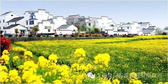 图三为国际慢城——桠溪镇