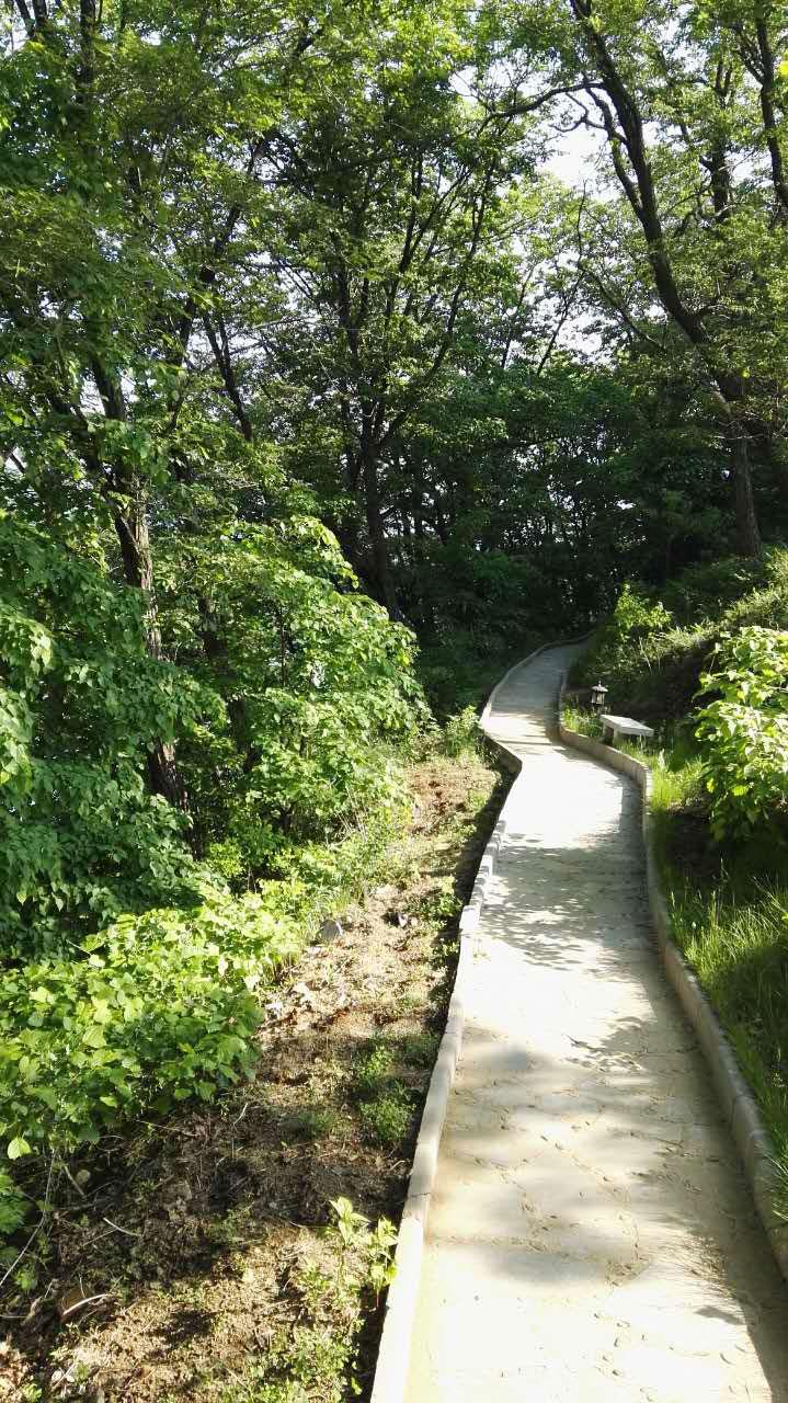 湖边的林间小道,在这里散步、晨练,减脂减肥,延年益寿。